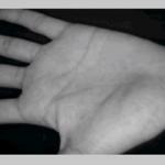 سیستم تشخیص کف دست انسان در نرم افزار Matlab